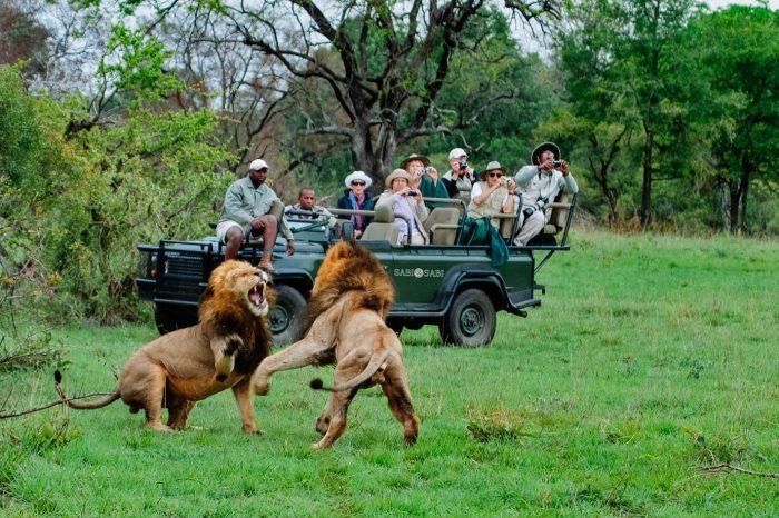 Ukutula lion Game Reserve Tour