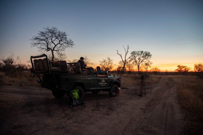 Kruger Manyeleti Safaris